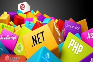 Portfolio for Web Programming & Designing